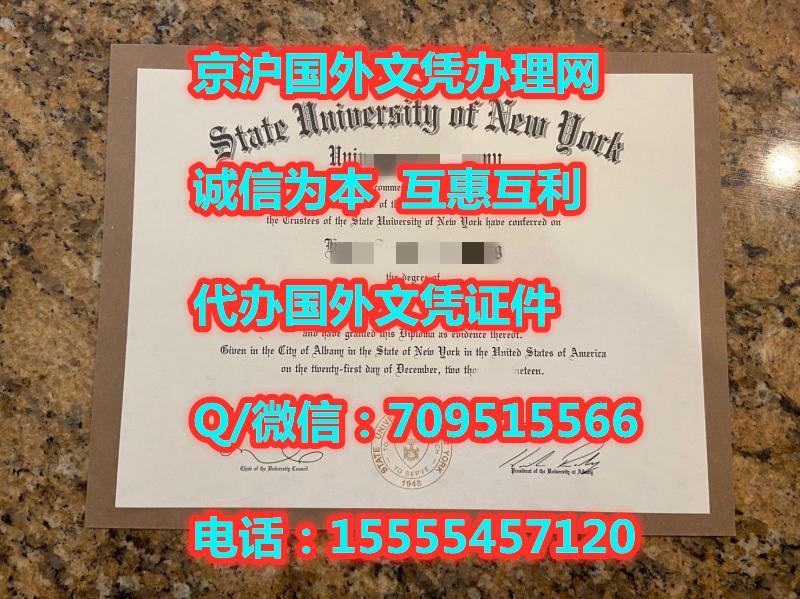 纽约州立大学奥尔巴尼分校本科文凭样本
